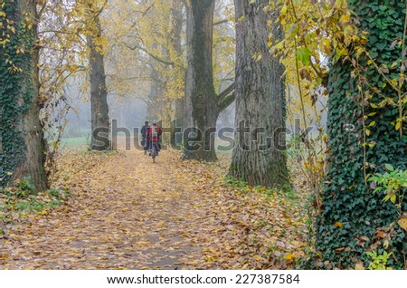 Two bikers in a park on a foggy autumn day - stock photo