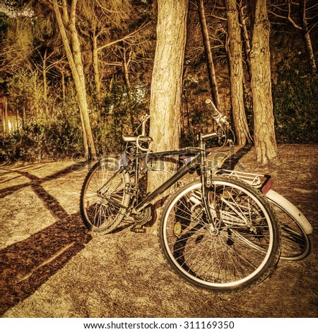 two bikes in the forest at night in sepia tone - stock photo