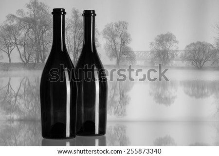 Two bottles and autumn landscape in the morning mist - stock photo