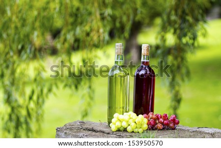Two bottles of wine and some grapes.