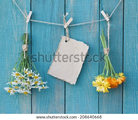 Two bouquets of camomile and calendula and sheet of paper for message on clothespegs on old blue wooden background - stock photo