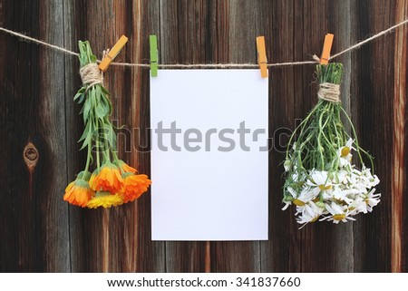 Two bouquets of camomile and calendula and sheet of paper for message on clothespegs on old wooden background - stock photo