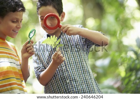 Two Boys Examining Leaf with Magnifying Glass - stock photo