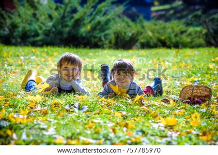 Two boys lay in the fallen autumn foliage on green grass. Warm autumn sunny day. Close face with yellow leaves. Friendship concept.