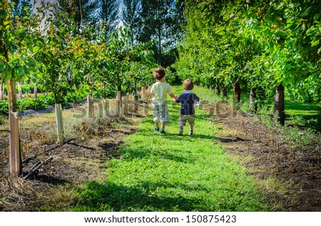Two boys walking holding hands picking fruit in summertime