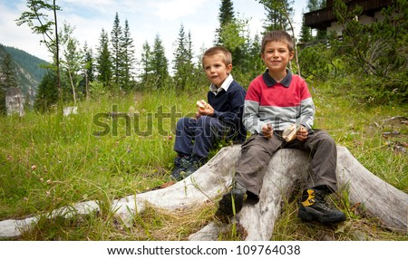 Two brothers having lunch with a sandwich in the mountains. - stock photo