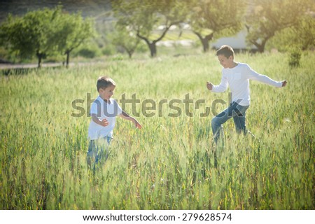 Two brothers playing on a meadow in summer - stock photo
