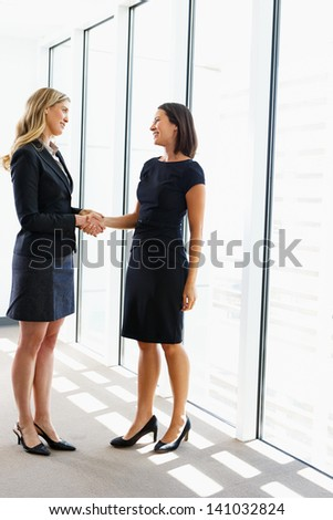 Two Businesswomen Shaking Hands In Office - stock photo
