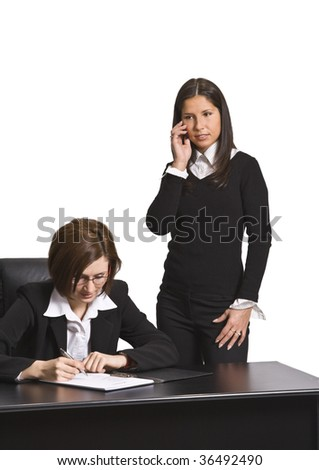 Two businesswomen working together in an office.
