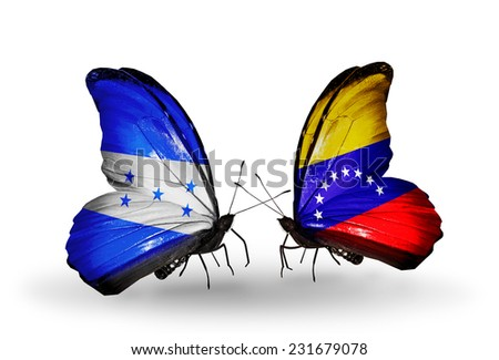 Two butterflies with flags on wings as symbol of relations Honduras and Venezuela - stock photo