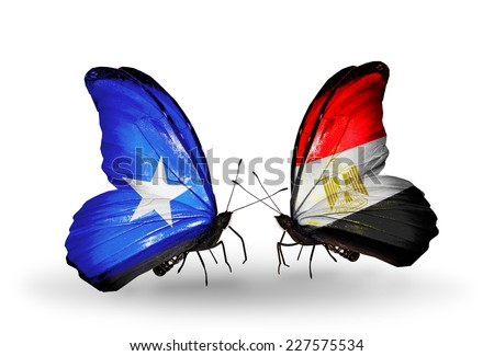 Two butterflies with flags on wings as symbol of relations Somalia and Egypt - stock photo