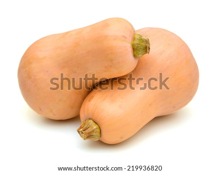 Two butternut pumpkins on white background