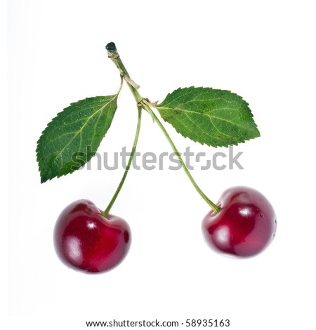 Two Cherries close up isolated on white background