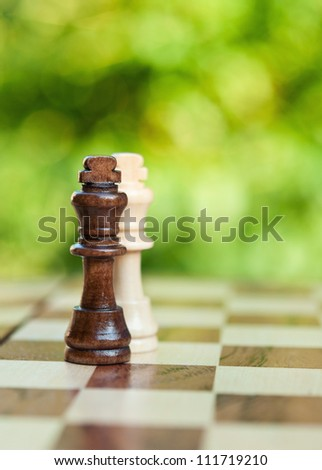two chess king on the board - stock photo