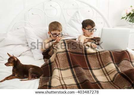 Two children, boys in parents' bed at morning with laptop and tablet. Brothers play computer games. Siblings and gadgets. Boys and pet, chiwawa or chihuahua dog in bed. Children in computer glasses.  - stock photo