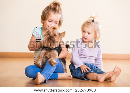 Two children playing with charming Yorkie at home - stock photo