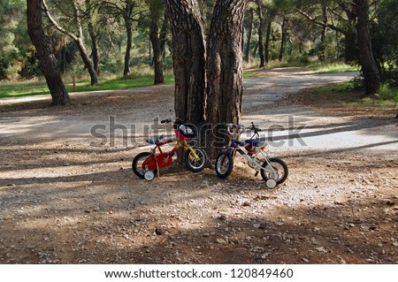 Two children's bikes with training wheels parked below a tree in a park. - stock photo