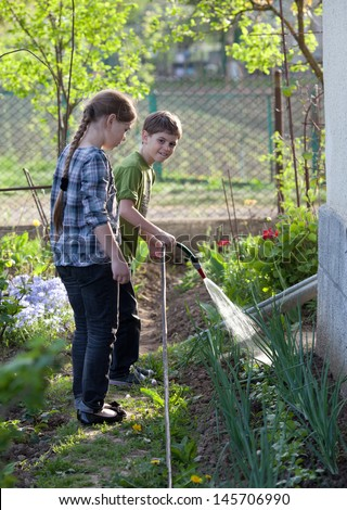 Two children watering onion bed with garden hose - stock photo