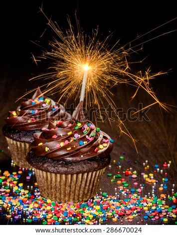 Two Chocolate birthday cupcakes with colorful sprinkles and lit sparkler - stock photo