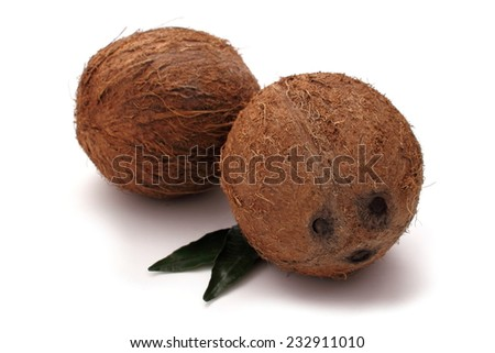 Two coconut on white background, isolated - stock photo