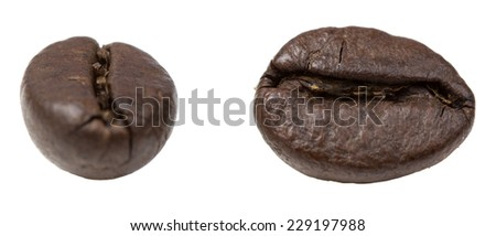 Two coffee grains isolated on white background - stock photo