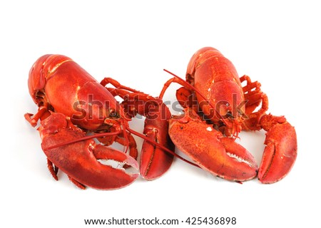 two cooked red lobster isolated on white background - stock photo