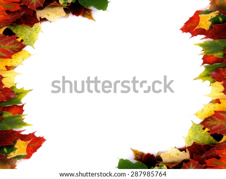 Two Corner Borders of Multi Colored Autumn Maple Leaf isolated on White background - stock photo