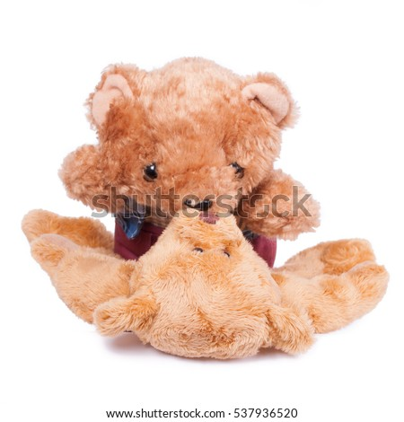Suck funny you teddy bear suggest you visit