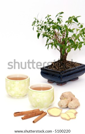 two cups of green tea with ginger, cinnamon and bonsai tree - stock photo
