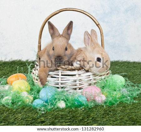 Two cute Easter bunnies sitting in a basket with Easter eggs and Easter grass all around them. - stock photo