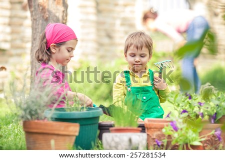 Two cute little children planting flowres in front or back yard, woman gardening in the background - stock photo