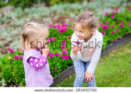 Two cute little girls, sisters or siblings playing with violet flowers in the garden on a summer day - stock photo