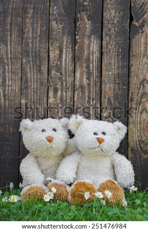 Two cute teddy bears sitting before a wall of an old wood. Idea for a greeting card.  - stock photo