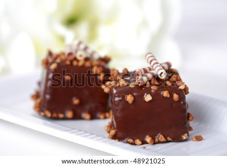 Two delicious brownies on the plate - stock photo