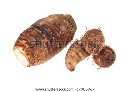 Two Difference Species Of Yam Roots On White background - stock photo