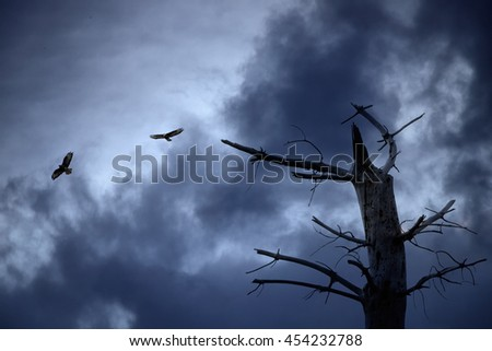Two eagles flying against an enhanced dramatic dark sky - stock photo