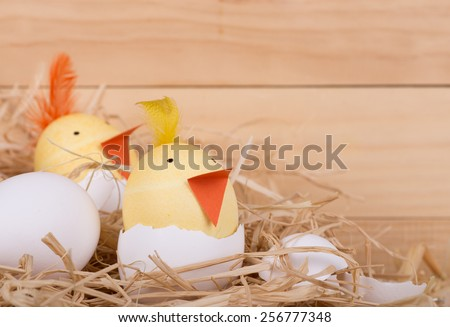 Two Easter eggs decorated as hatching chicks - stock photo
