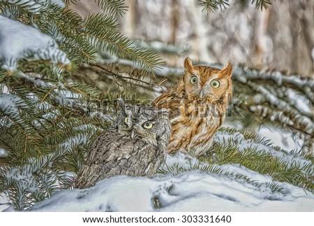 Two eastern screech owls in fir tree, digital oil painting - stock photo