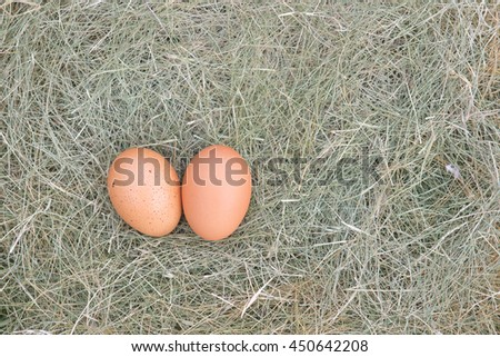 Two eggs on haystack.