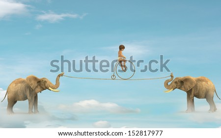 Two elephant pulling a rope with a child up