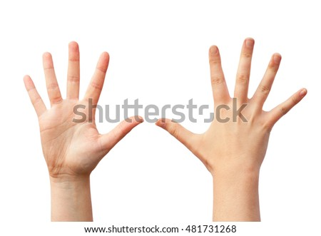 Two empty human hands, front and back view. Isolated photo on white background