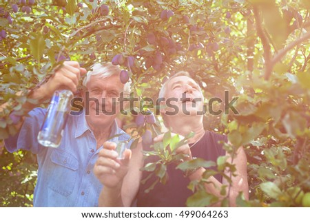 Two excited seniors with bottle of alcohol enjoying sunny day outdoors under the plum tree.