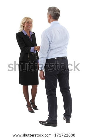 Two executives shaking-hands - stock photo