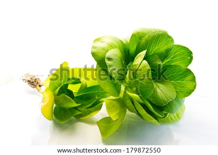 Two fleshy spinach leaves on the white background - stock photo