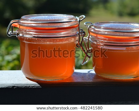 Two flip-lid glass jars of homemade rose hip apple jelly.
