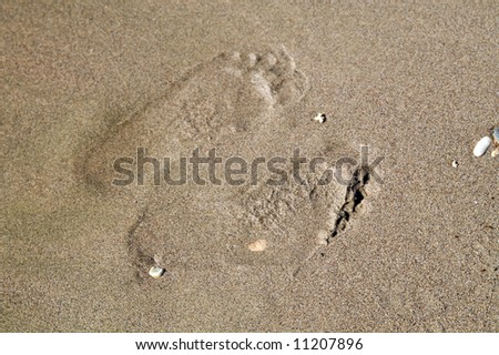 Two footprints on wet sand - stock photo