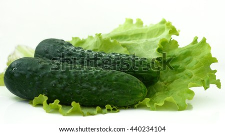 Two fresh cucumber and lettuce Ukraine - stock photo