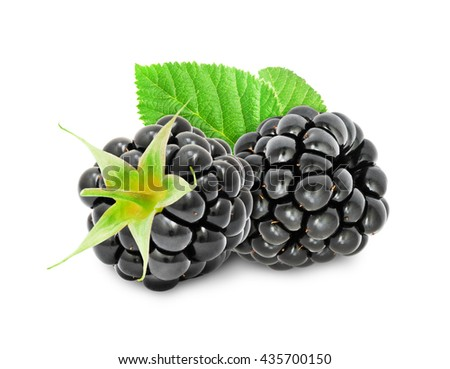 Two fresh ripe blackberry berries with leaves isolated on white background. Design element for product label, catalog print, web use. - stock photo