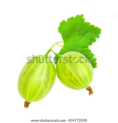 Two fresh ripe green gooseberry berries with leaves isolated on white background. Design element for product label, catalog print, web use. - stock photo