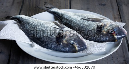two fresh uncooked gilthead on a white plate